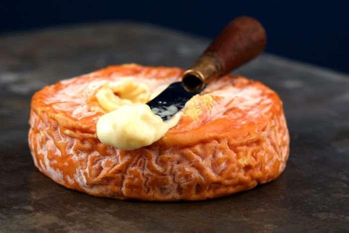 queijo epoisses de bourgogne