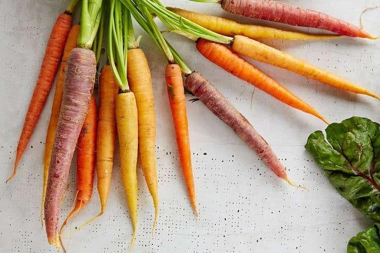 tipos de cenoura