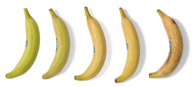 Banana-da-terra chiquita